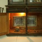 экспозиции музея скелет человека