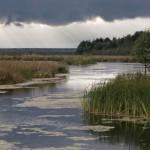 Озёра и болота Удмуртии