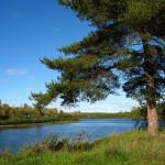 Река Чепца