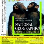 Сто чудес света. Золотая коллекция National Geographic.USA