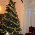 «Рождественская ёлка на Даче Башенина»