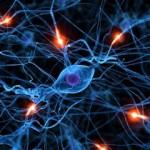 Как тренировать свой мозг