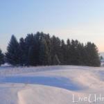 снежные угоры