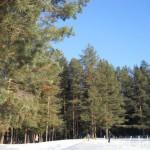 зимой на Лысой горе