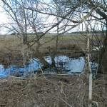 маленькая речка