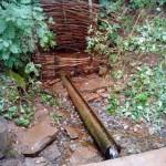 родник и деревянная колода в заповеднике Лудорвай