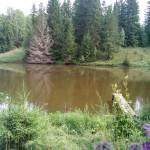 вид на озеро в заповеднике Лудорвай