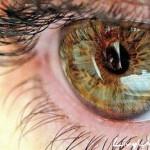 Как сберечь свое зрение