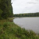 Карсовайский пруд