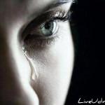 Нужно ли прощать обиды