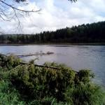 пруд в селе Карсовай