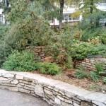 сад санаторий Варзи-Ятчи