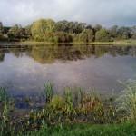 санаторий Варзи-Ятчи пруд
