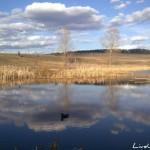 Открытие весенней охоты 2014 в Удмуртии