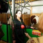 экскурсия в закулисную часть ижевского цирка дрессировщица лошадей