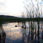 озеро Ольховое Каракулинский район