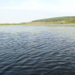 водная гладь озера Ольховое близ села Вятское Каракулинский район
