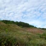 высокий берег озеро Ольховое урочище Обухи близ села Вятское Каракулинский район