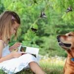 Когда и как обучать ребёнка чтению