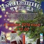 Новогоднее представление «Ожившие чудеса» в Сарапульском музее